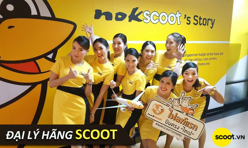 dai-ly-scoot-office